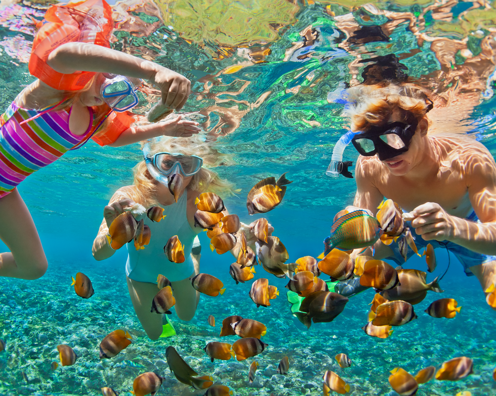 97fe89e1d2e 5 hours of cruising with snorkeling in Skopelos