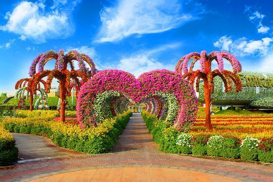 Dubai Miracle Garden And Global Village Shopping Tour Outdoortrip